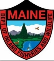 K9 unit finds missing Maine woman in woods and OK