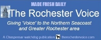 Rochester Voice list of longtime advertisers, nonprofit partners